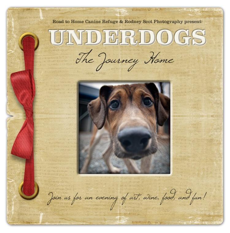 underdog-art